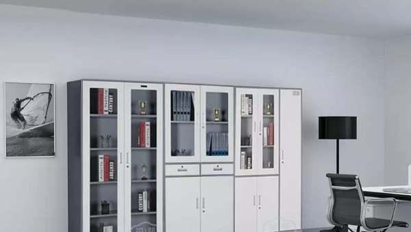 钢制文件柜定制-丰龙文件柜定制