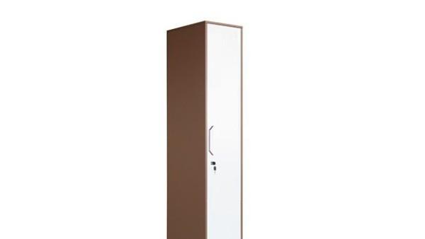 单门更衣柜尺寸及产品特点介绍,丰龙小型单门更衣柜