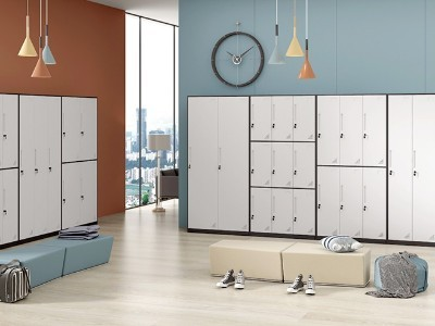 小型储物更衣柜,多门更衣柜介绍_丰龙钢制更衣柜