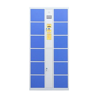 12门电子存包柜蓝色-