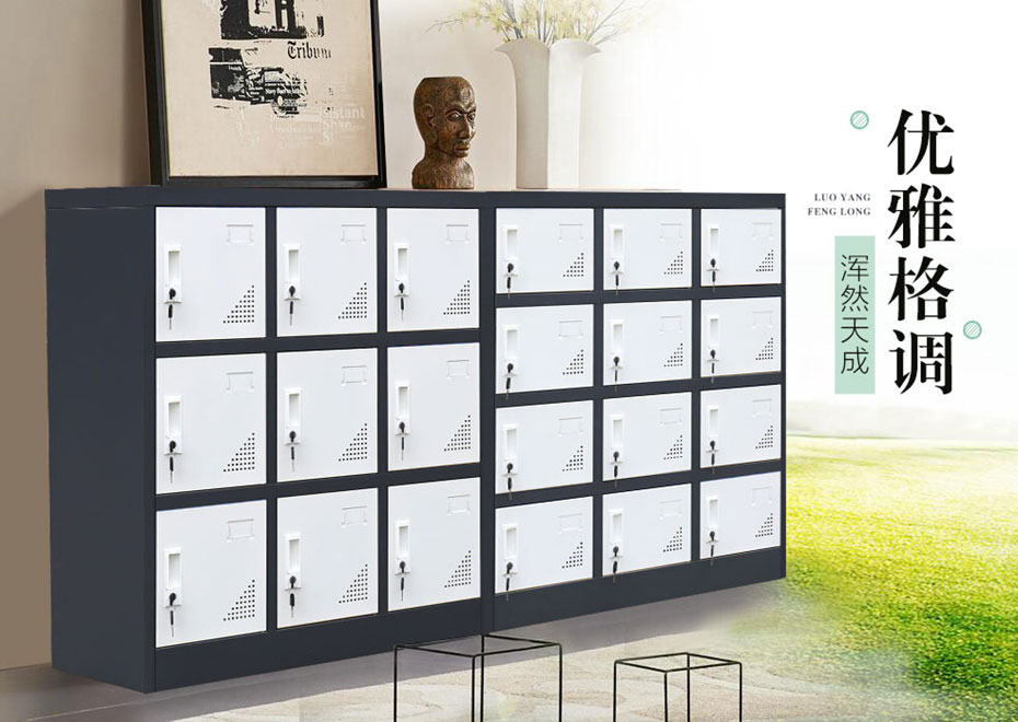 钢制储物柜,多门储物柜,十二门书包柜